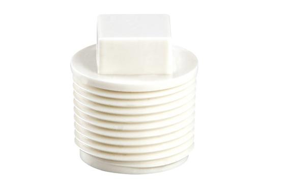 plug screw ;